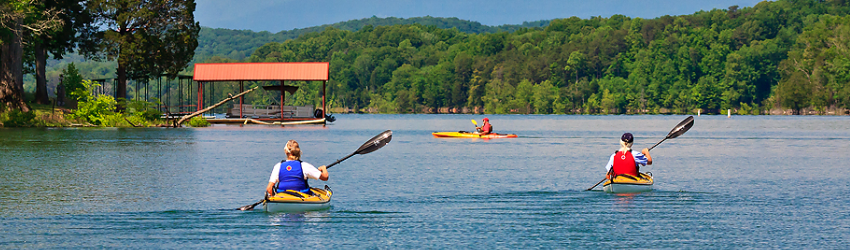 norris lake recreational areas